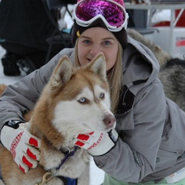 Picture of Dog Sled Dash Tour