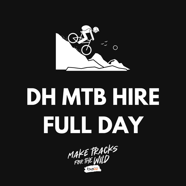 Picture of DH MTB Hire