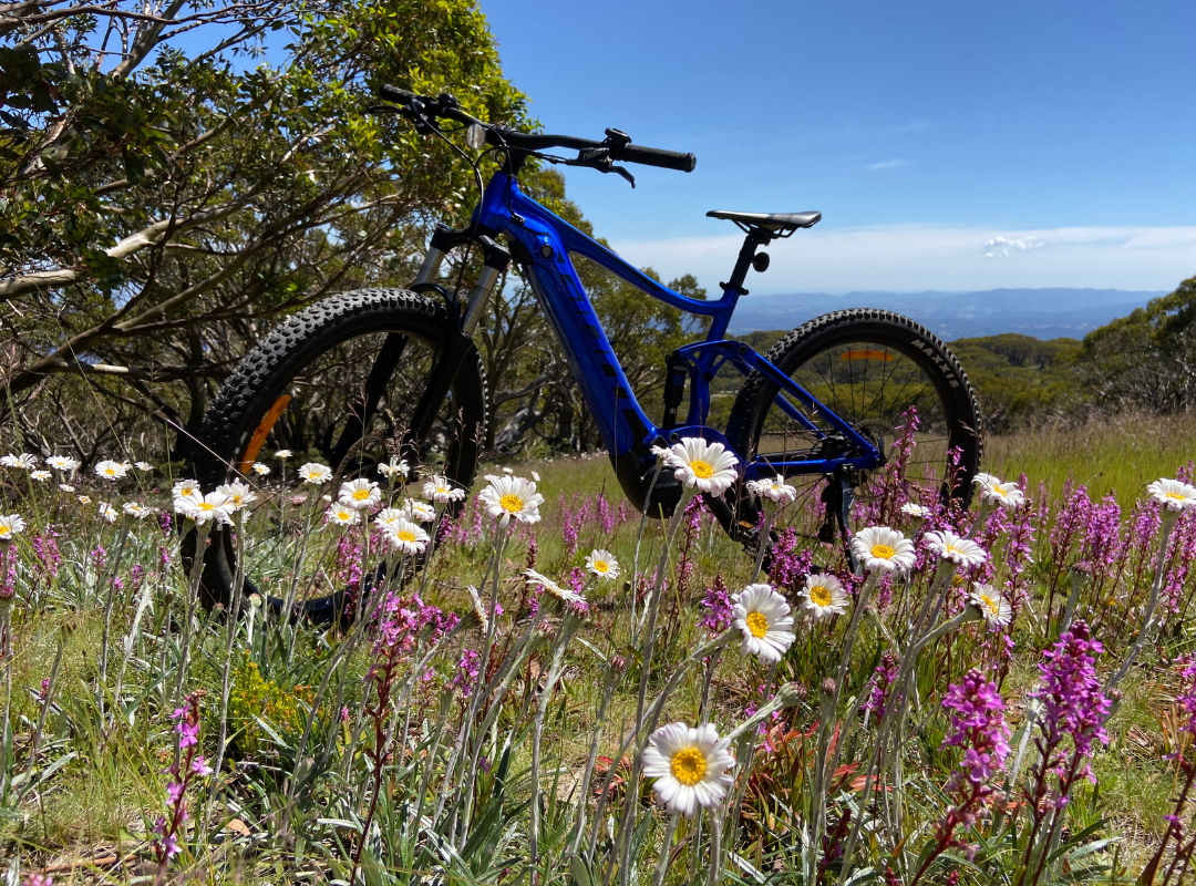 Picture for category E-Bike Hire